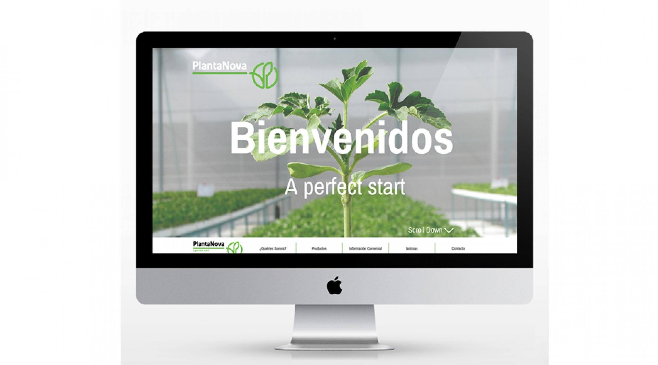 Página Web Plantanova