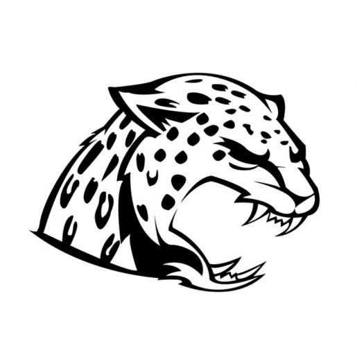 Trazo de Jaguar B&N.